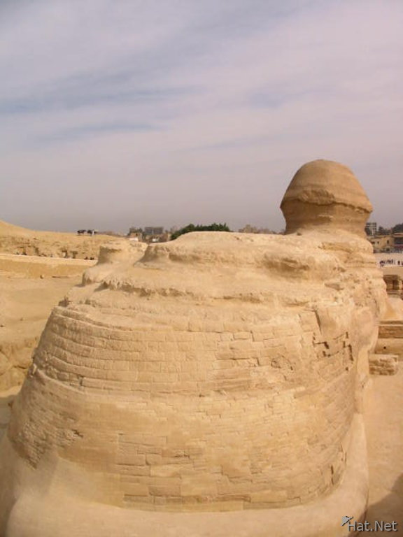 great behind ot the sphinx