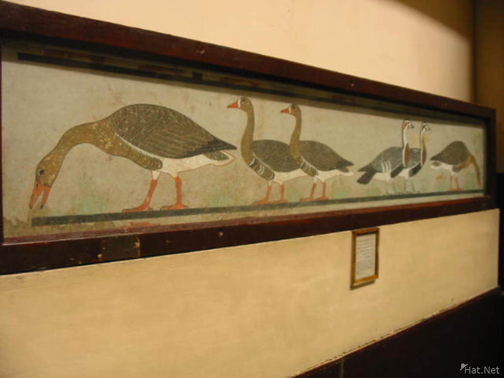 The geese of Meidum, ancient Egyptian painting of white-fronted and red-breasted geese