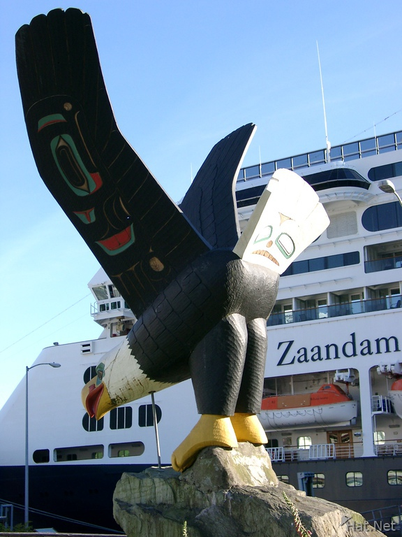 eagle and zaandam