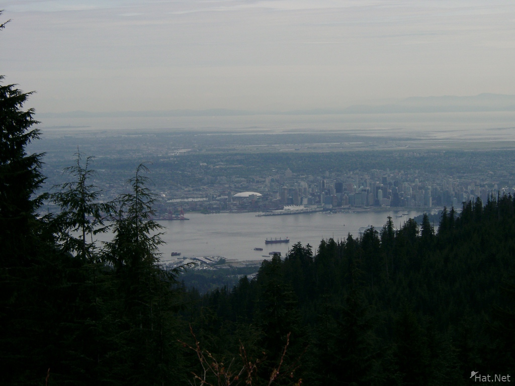 vancouver from moutain fommer