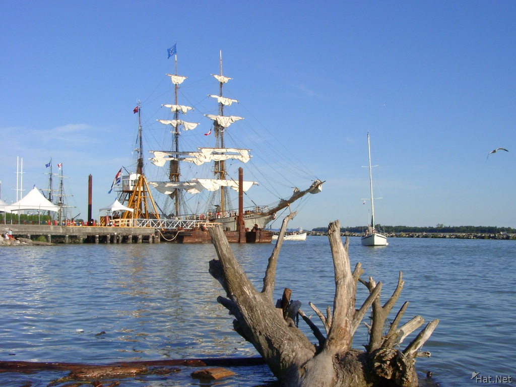 pretty tall ship