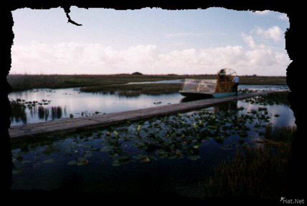 everglade airboat