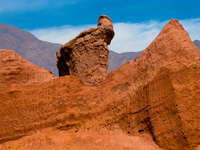 the eagle Cafayate, Jujuy and Salta Provinces, Argentina, South America