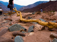 view--dead finger in quebrada Cafayate, Jujuy and Salta Provinces, Argentina, South America