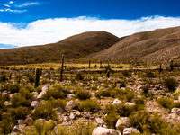 wilderness of coctaca Humahuaca, Jujuy and Salta Provinces, Argentina, South America