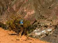 hello kitty on holy cross trail Tilcara, Iruya, Jujuy and Salta Provinces, Argentina, South America