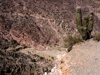 vast canyon Tilcara, Jujuy and Salta Provinces, Argentina, South America