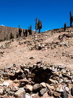 burial ground Purmamarca, Tilcara, Jujuy and Salta Provinces, Argentina, South America
