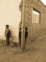 shy boys in san antonio de lipez Tupiza, Potosi Department, Bolivia, South America