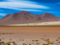 view--desert of dali San Antonio, Potosi Department, Bolivia, South America