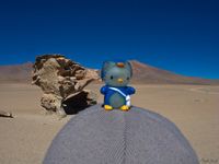 hello kitty on a hat Laguna Colorado, Potosi Department, Bolivia, South America