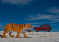 view--tiger attack jeep in salar de uyuni Salar de Uyuni, Potosi Department, Bolivia, South America