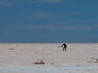 salt worker in colchani Salar de Uyuni, Potosi Department, Bolivia, South America