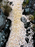 pebble road Sao Jorge, Goias (GO), Brazil, South America