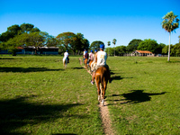santa clara horse riding Fazenda Santa Clara, Mato Grosso do Sul (MS), Brazil, South America
