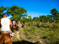horse riding in pantanal Fazenda Santa Clara, Mato Grosso do Sul (MS), Brazil, South America