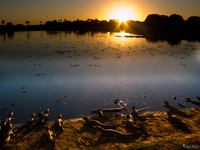 20091031061822_view--caiman_sunrise