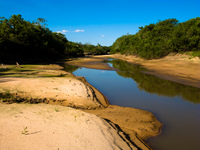dried river bed in pantanal Santa Clara Farm, Mato Grosso do Sul (MS), Brazil, South America