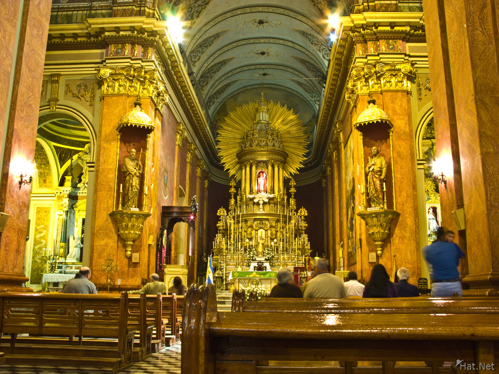view--inside of salta catedral