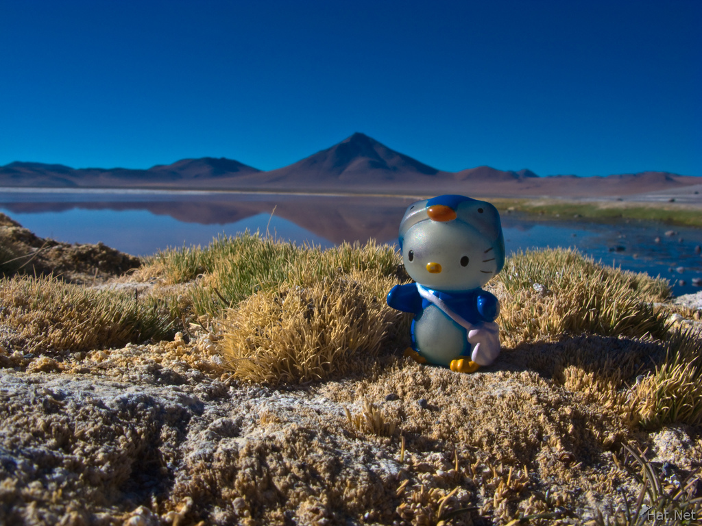 hello kitty in laguna colorada
