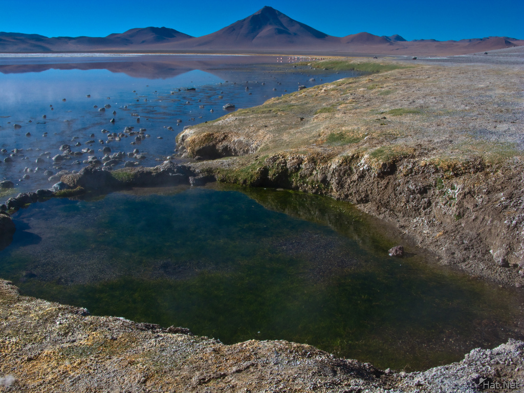 view--pool of laguna colorada