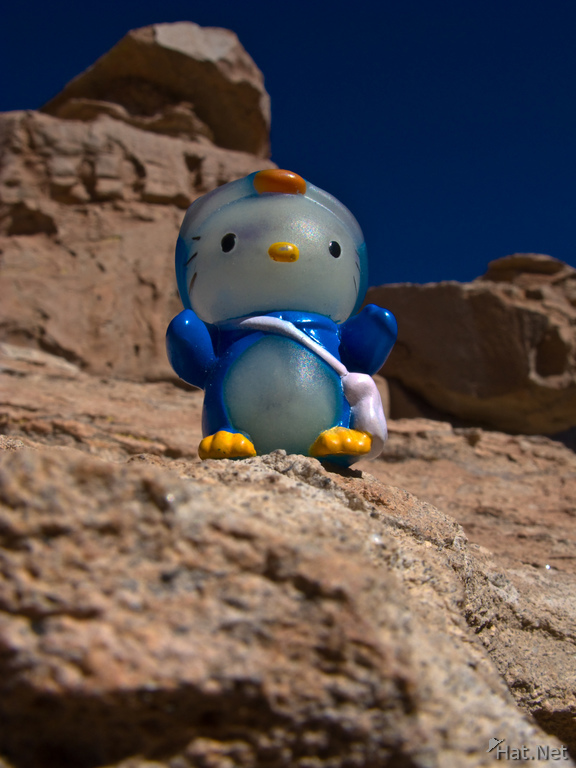 hello kitty in desert of siloli