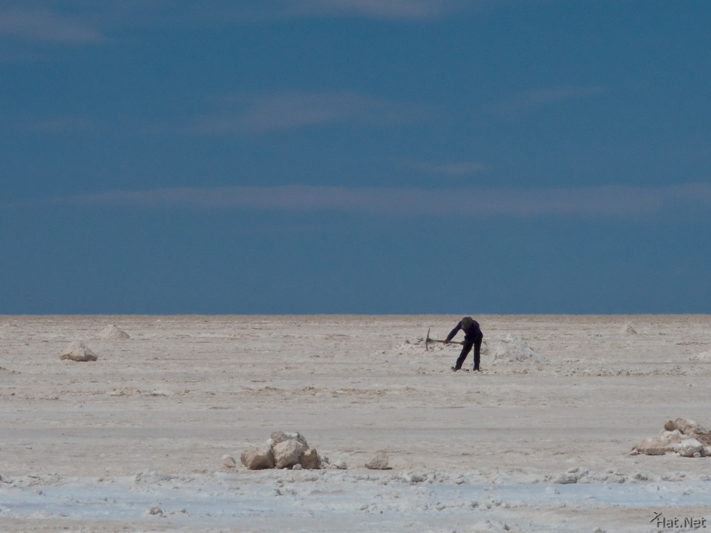 salt worker in colchani