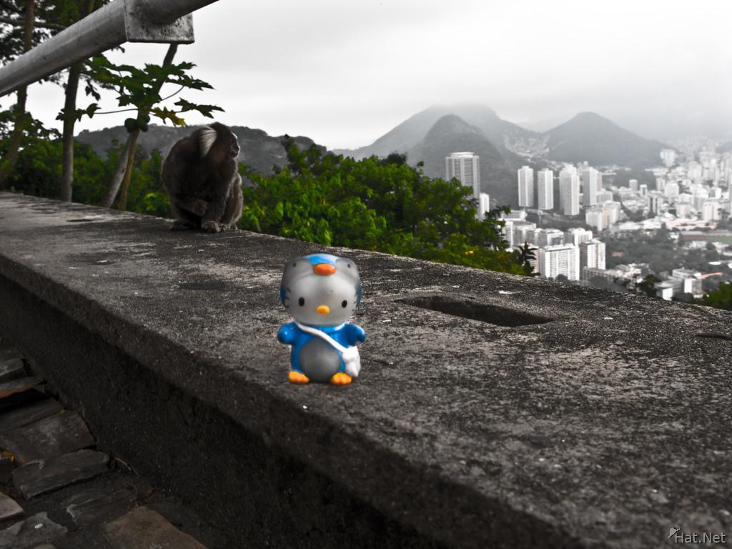 ed24525d7 ... hello kitty and urca monkeys Rio de Janeiro, Rio de Janeiro, Brazil,  South