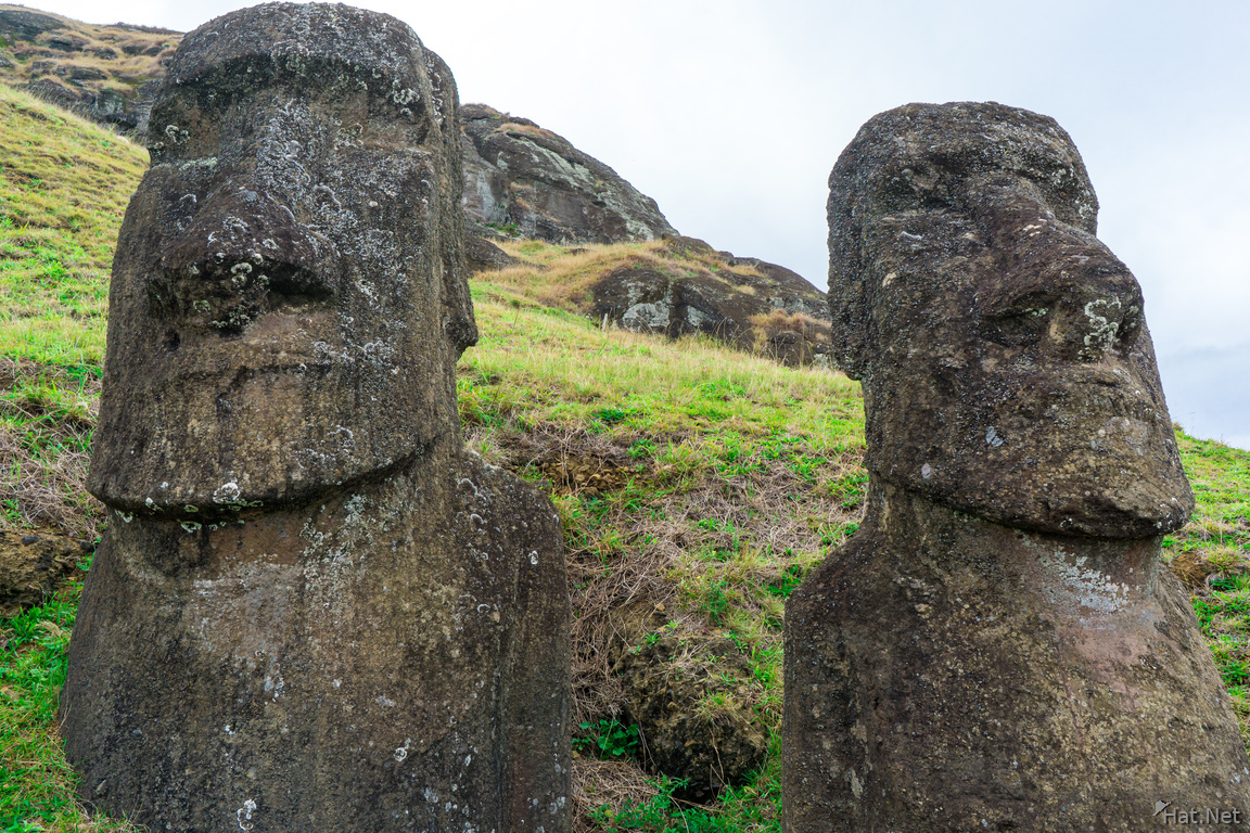 Two Rano Raraku Moais