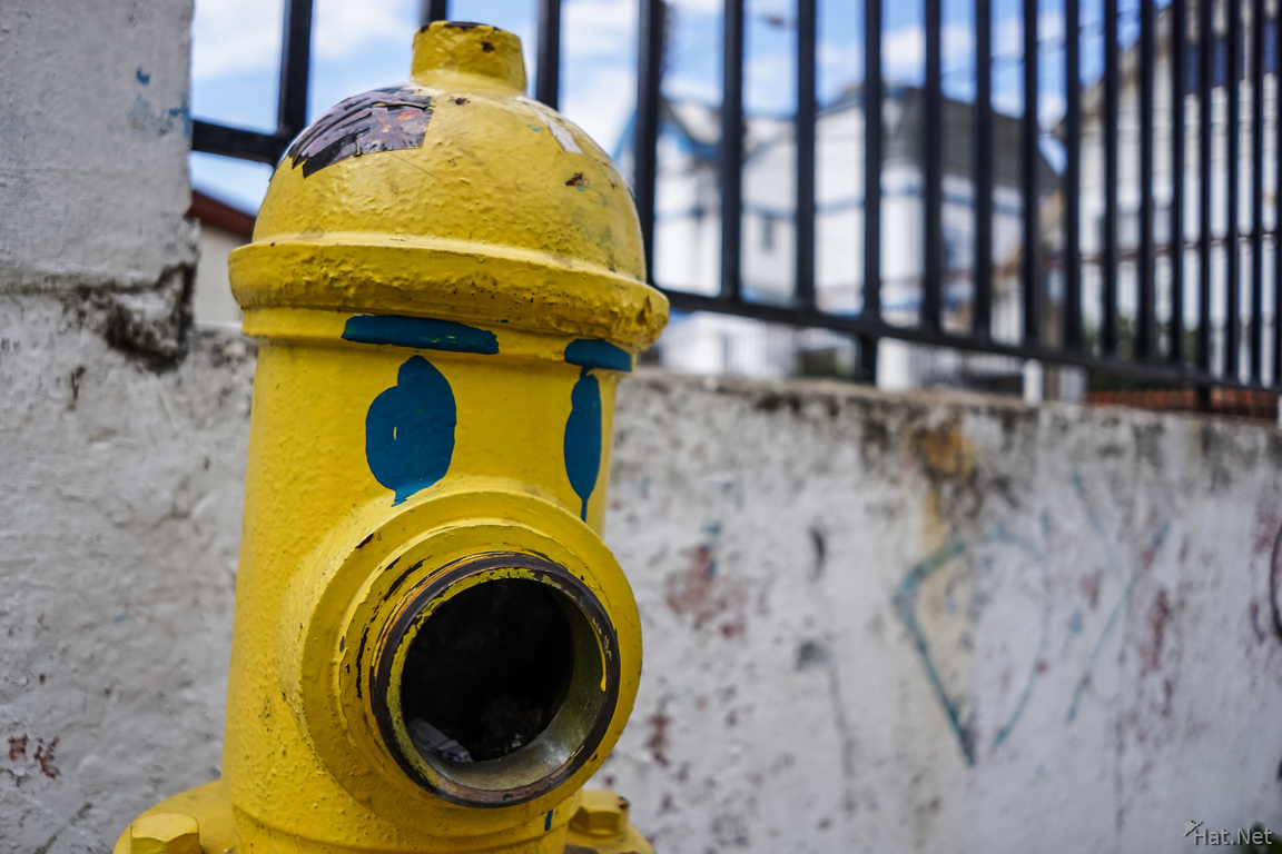 Hydrant with eyes