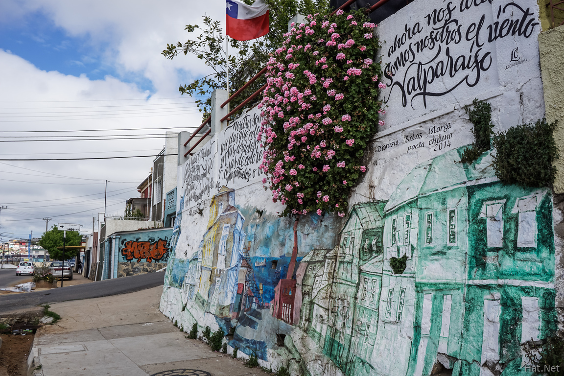 Valparaiso Street Art Green Houses