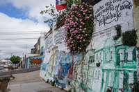 20151013155908_Valparaiso_Street_Art_Green_Houses