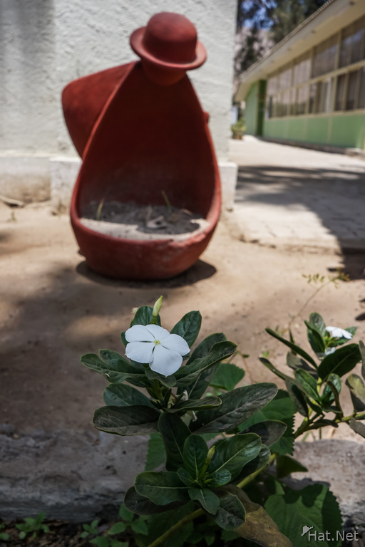 Old Lady Pot in Azapa Valley Museum