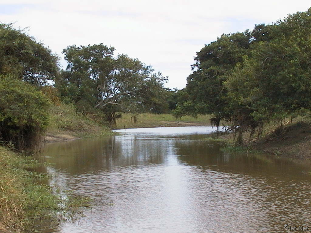 http://www.hat.net/album/south_america/bolivia/5_amazon-pampa_in_rurre/012_the_pampa_river.jpg