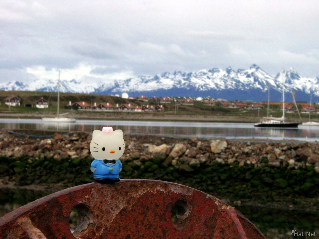 kitty in ushuaia