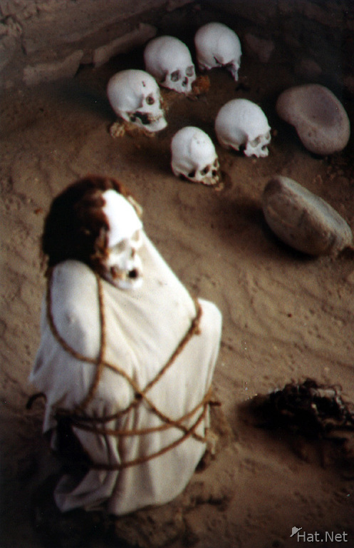 nazca mummy with head drformed